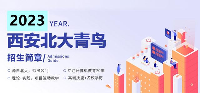 北大青鸟2020 名企定制班